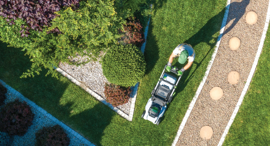 The basics of writing a landscaping business plan